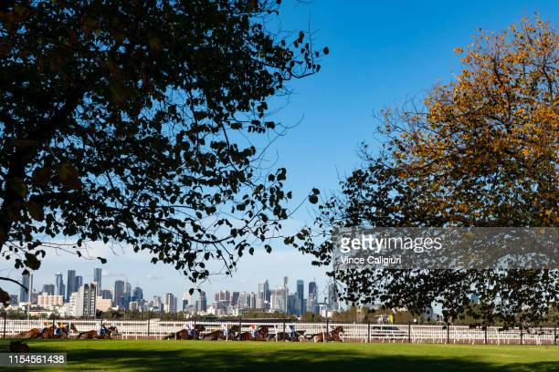 General view of Race 6 TAB/ATA Celebrates Women Trainers Handicap during Melbourne Racing at Flemington Racecourse on June 08 2019 in Melbourne...