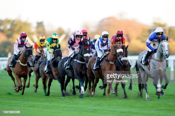 A general view of racing at Ascot Racecourse on November 03 2018 in Ascot England