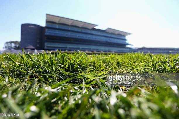 General view of Royal Randwick Racecourse prior to the Chelmsford Stakes Day on September 2 2017 in Sydney Australia