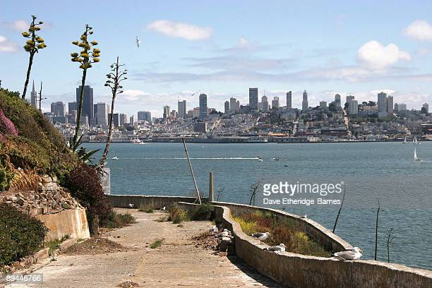 A general view of San Francisco from Alcatraz Island on June 13 2009 in San Francisco United States Alcatraz was originally built as a Civil War...