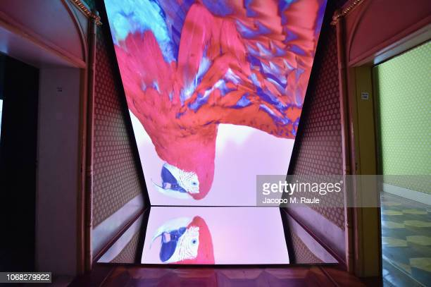 A general view of Solve Sundsbo Beyond The Still Image exhibition opening during the Vogue Photo Festival at Palazzo Reale on November 14 2018 in...