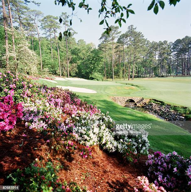 A general view of the 13th hole Azalea seen through its namesake azalea bushes during the 1999 Masters Tournament at Augusta National Golf Club in...