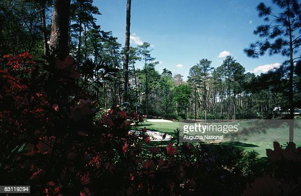 A general view of the 13th hole is seen through its namesake azaleas at Augusta National Golf Club in March 1976 in Augusta Georgia