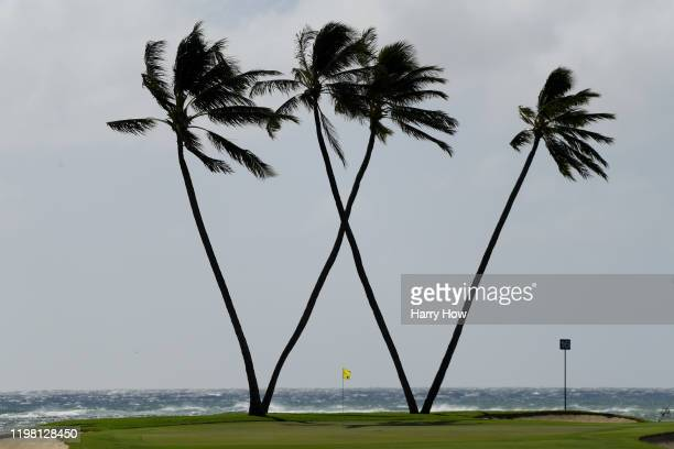 A general view of the 16th green during practice prior to the Sony Open in Hawaii at the Waialae Country Club on January 07 2020 in Honolulu Hawaii