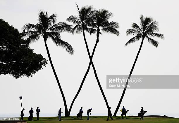 A general view of the 16th green during practice rounds prior to the Sony Open In Hawaii at Waialae Country Club on January 9 2017 in Honolulu Hawaii