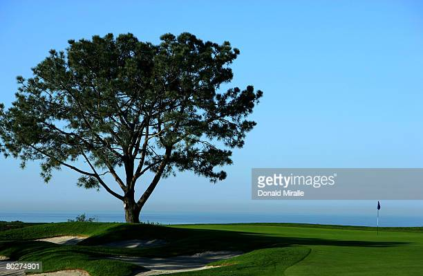 A general view of the 16th hole Torrey Pines South Golf Course site of the 2008 US Open on March 16 2008 in La Jolla California