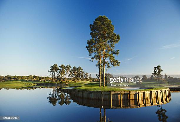 General view of the 5th hole on the Nicklaus East Course on 1st January 1992 at the Grand Cypress Golf Club in Orlando, Florida, United States.