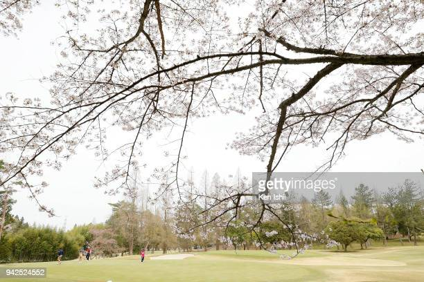 A general view of the 8th hole during the final round of the Hanasaka Ladies Yanmar Golf Tournament at Biwako Country Club on April 6 2018 in Ritto...
