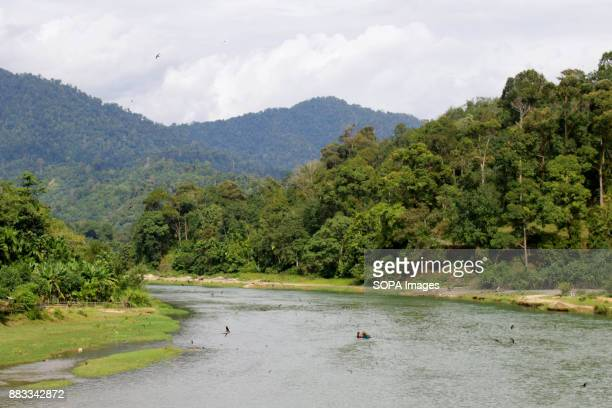 A general view of the Aceh forest with a river running through it Soil and sand fraud is often illegally removed with the use of heavy equipment...