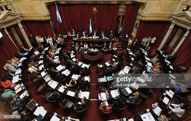 A general view of the Argentine senate in Buenos Aires on February 21 as they discuss the possibility of an agreement with Iran to establish a truth...