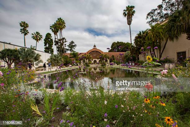 General view of the atmosphere at Balboa Park outside Comic-Con Museum on July 07, 2019 in San Diego, California.
