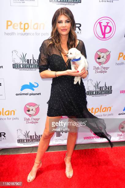 General view of the atmosphere at the 4th Annual World Dog Day at West Hollywood Park on May 18, 2019 in West Hollywood, California.