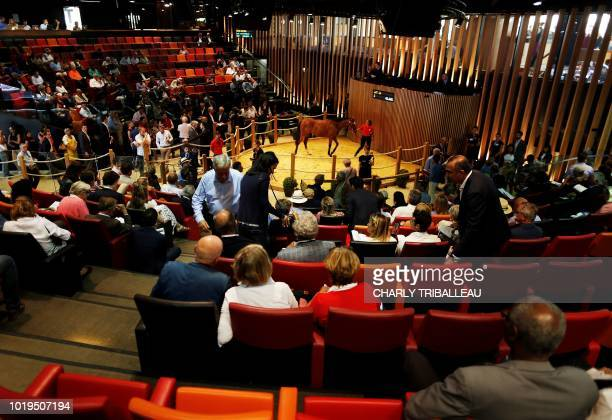 A general view of the audience as a foal is paraded during the yearlings sales one of the world renowned annual thoroughbred horse sales in Deauville...