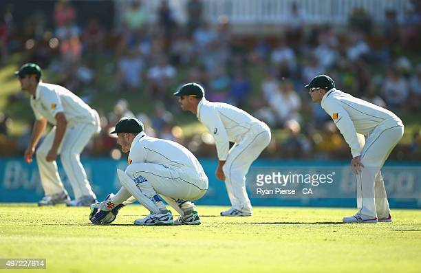 General view of the Australian slips during day three of the second Test match between Australia and New Zealand at WACA on November 15 2015 in Perth...
