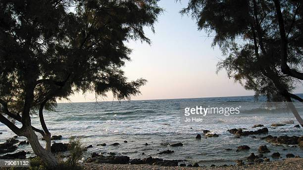 A general view of the Beach scenesea and trees near Milatos on September 092007 in CreteGreeceMilatos is located beyond Sissi The sleepy village...