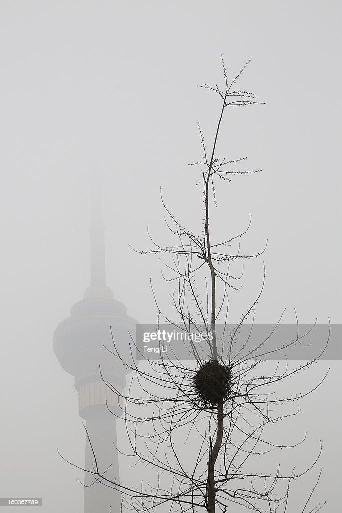 A general view of the Central TV Tower behind a nest during severe pollution on January 30, 2013 in Beijing, China. The fourth round of heavy smog to hit Beijing in one month has sent more people to the hospital with respiratory illnesses and prompted calls for legislation to curb pollution. The haze choking many Chinese cities covers a total area of 1.3 million square kilometers, the China's Ministry of Environmental Protection said Tuesday.