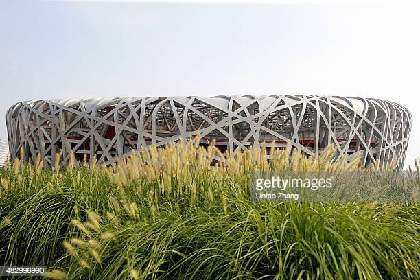 A general view of the China National Stadium also known as Bird's Nest on August 5 2015 in Beijing China 15th IAAF World Championships will be held...