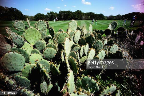 A general view of the course during Round Two of the Valero Texas Open at TPC San Antonio ATT Oak Course on March 28 2014 in San Antonio Texas