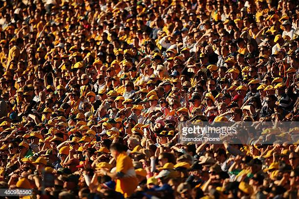 A general view of the crowd during the International Test match between the Australia Wallabies and France at Allianz Stadium on June 21 2014 in...