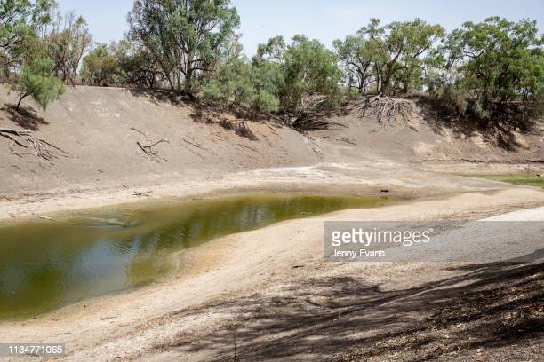 General view of the Darling-Barka river from the property of Barkandji person Christine Awege on March 06, 2019 in Wilcannia, Australia. The...