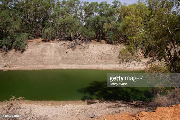 A general view of the DarlingBarka river from the property of Barkandji person Christine Awege on March 06 2019 in Wilcannia Australia The Barkandji...