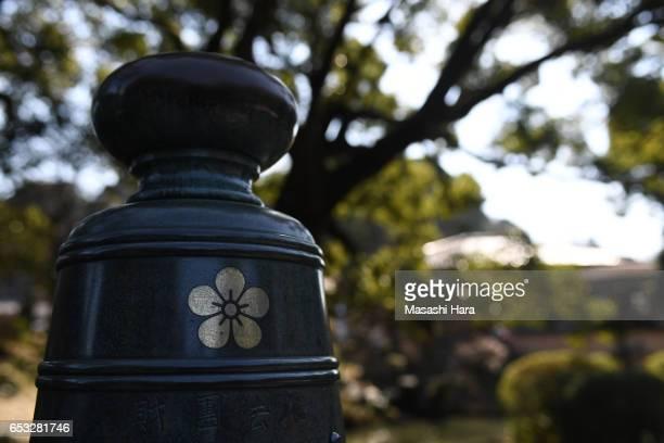 A general view of the Dazaifu Tenmangu Shrine on March 11 2017 in Dazaifu Fukuoka Japan