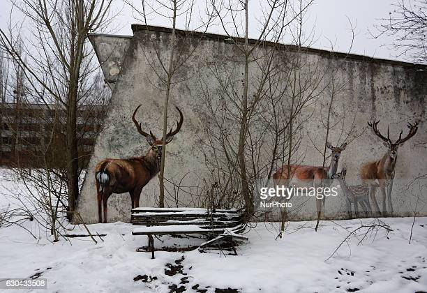 A general view of the deserted city of Pripyat near the Chernobyl nuclear power plant in Chernobyl Ukraine 22 December 2016 The new protective...