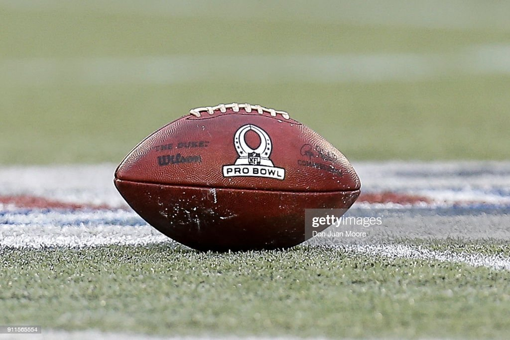 A General View Of The Duke Wilson Official Nfl Football At News