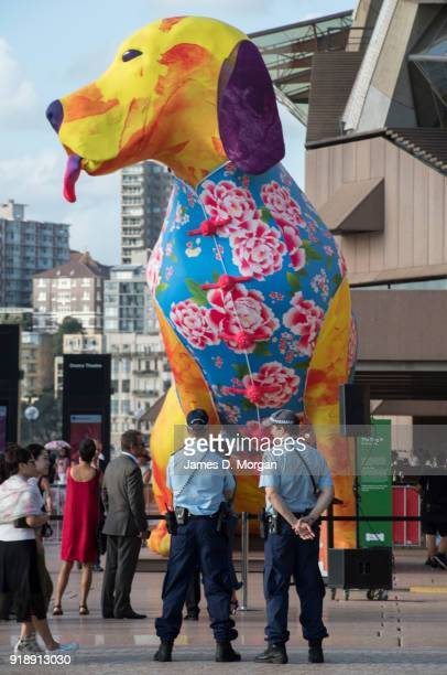 A general view of the eightmetre multicoloured illuminated dog lantern at the Sydney Opera House on February 16 2018 in Sydney Australia The giant...