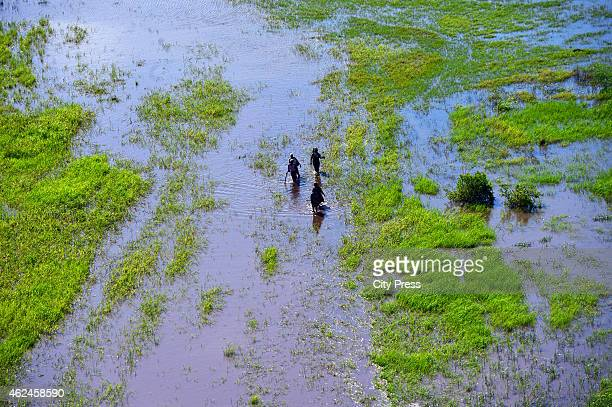 A general view of the flooded Maganja da Costa district on January 21 2015 in Maganja da Costa Mozambique About 60 people have been killed and...