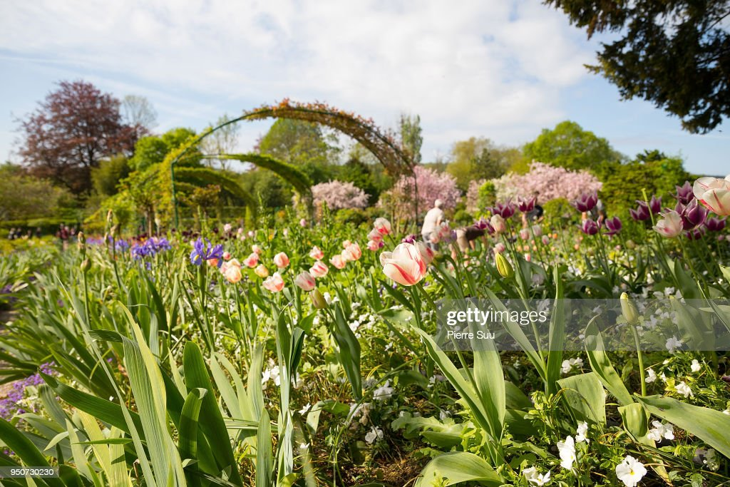 """Les Pivoines"" : Reproduction Of Claude Monet's Painting In The Giverny Gardens"