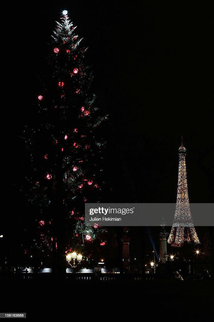 A general view of the giant Christmas tree (35 meters) which was installed at the concorde place on December 10, 2012 in Paris, France.