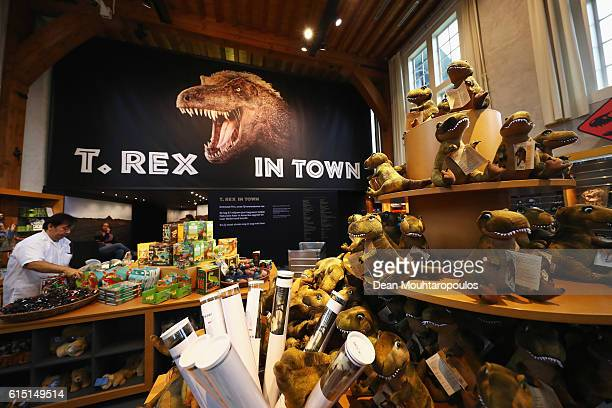 A general view of the gift shop at Trix the female TRex exhibition at the Naturalis or Natural History Museum of Leiden on October 17 2016 in Leiden...