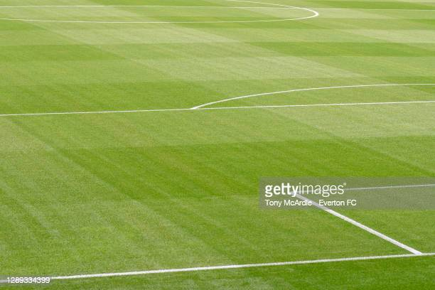 General view of the grass pitch at Goodison Park before the Carabao Cup Second Round match between Everton and Salford City at Goodison Park on...