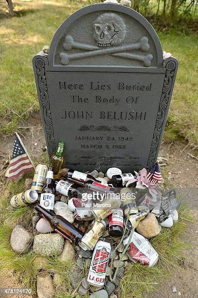 A general view of the gravesite where actor John Belushi is thought to be buried in Chilmark Cemetery on Martha's Vineyard onJune 22 2015 in Chilmark...