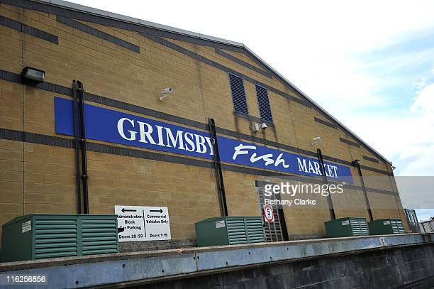 A general view of the Grimsby Fish Auction on June 15 2011 in Grimsby England Grimsby Fish Market is recognised as being one of the most important...