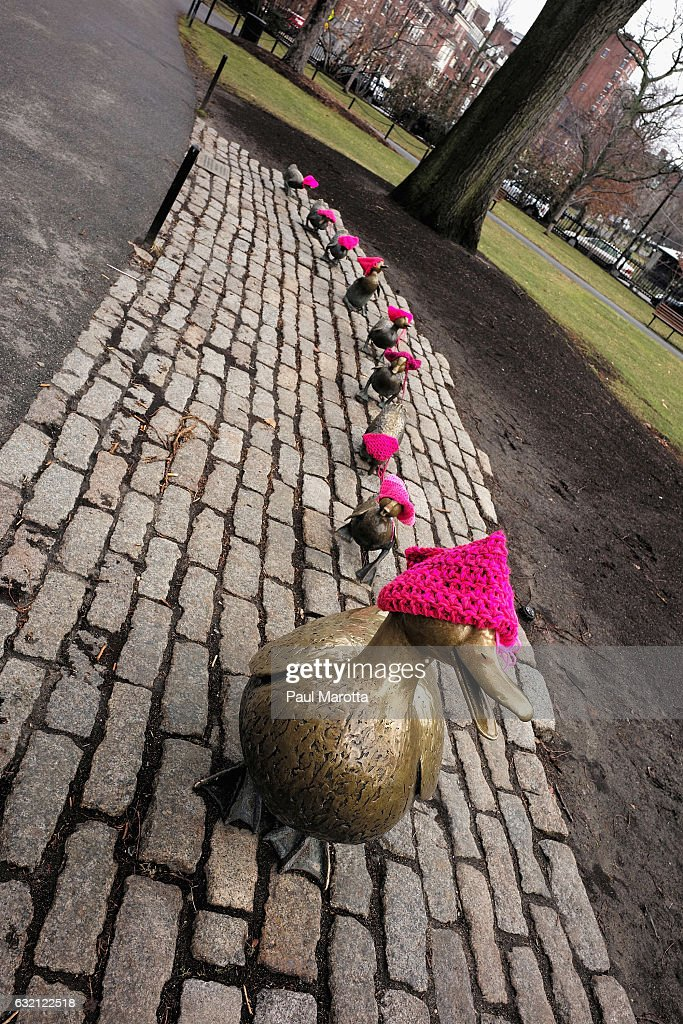 A general view of the Make Way for Ducklings sculptures on Boston Common by Nancy Schon based on the book by Robert McCloskey which have been adorned with pink knit hats to protest Donald Trump's election on January 19, 2017 in Boston, Massachusetts.