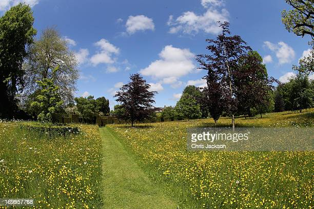 A general view of the meadows at Highgrove House at the launch for the Coronation Meadows Initiative on June 5 2013 in Tetbury England