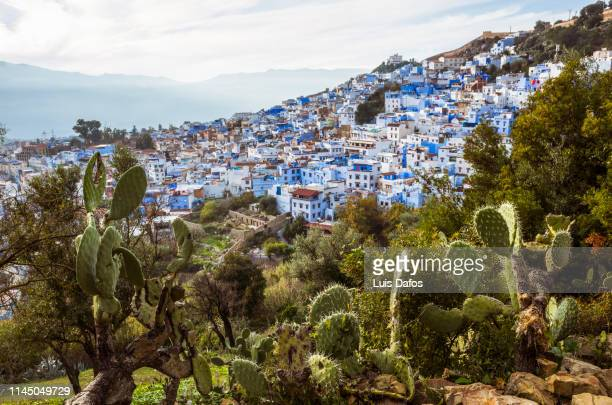 general view of the medina - chefchaouen photos et images de collection