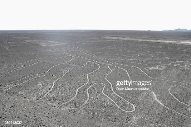 A general view of the Ministerio de Cultura Lineas Y Geoglifos De Nasca or Culture Ministry Nazca Lines a group of preColumbian geoglyphs etched into...