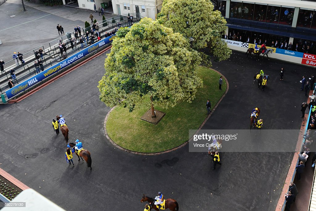 A general view of the mounting yard during Melbourne Racing at Moonee Valley Racecourse on August 20, 2016 in Melbourne, Australia.