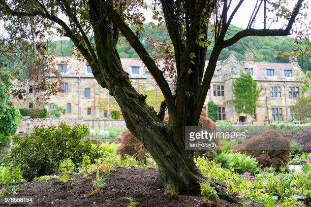 General view of the newly designed arts and crafts gardens at Mount Grace Priory ahead of a media event to launch the design by garden designer Chris...