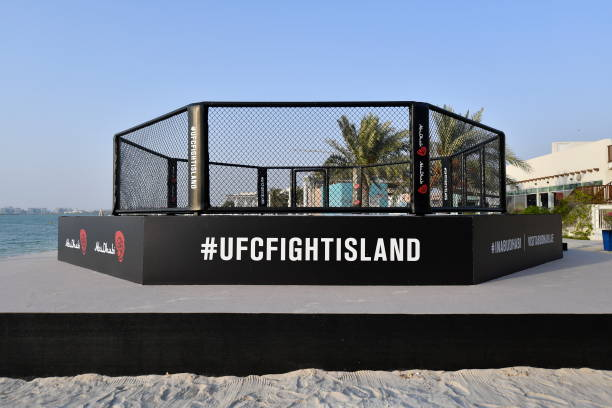 ARE: UFC Fight Island Previews