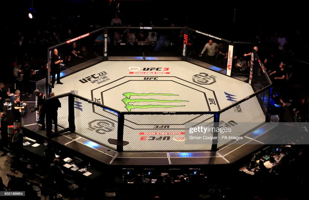 A general view of the Octagon at The O2 Arena, London News Photo