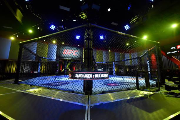NV: UFC Fight Night: Sandhagen v Dillashaw