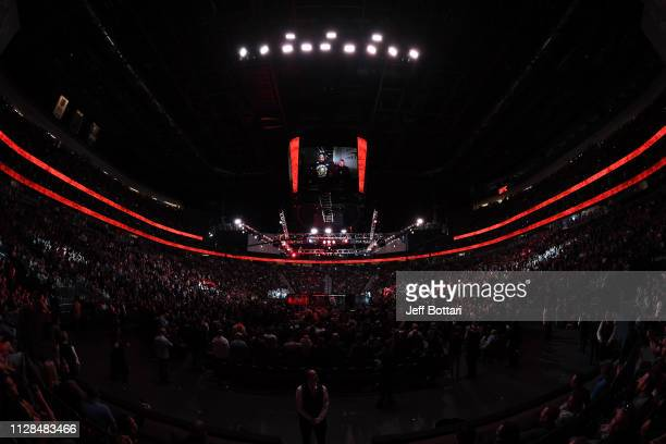 A general view of the Octagon prior to the UFC light heavyweight championship bout between Jon Jones and Anthony Smith during the UFC 235 event at...