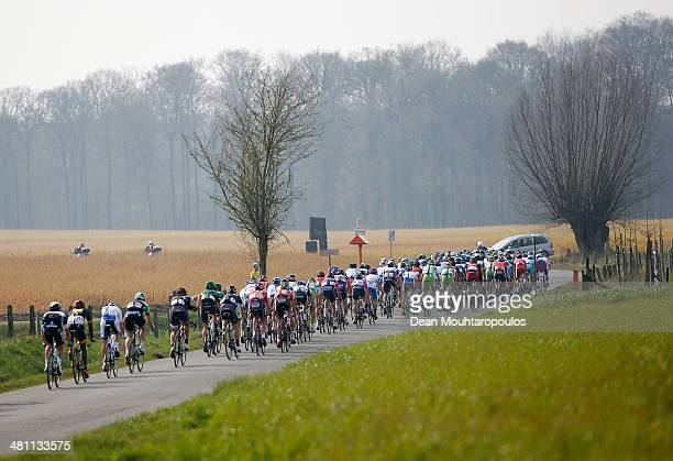 General view of the pelaton during the E3 Harelbeke Cycle Race on March 28, 2014 in Harelbeke, Belgium.