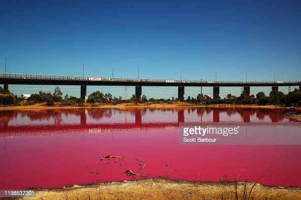 A general view of the pink lake at Westgate Park on March 27 2019 in Melbourne Australia The inland lake turns pink in warmer months thanks to a...