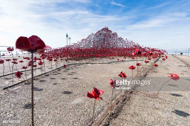 """General view of the poppy sculpture """"Wave"""" at Barge Pier, Shoeburyness, Southend-on- Sea as part of a UK-wide tour organised by 14-18 NOW on April..."""