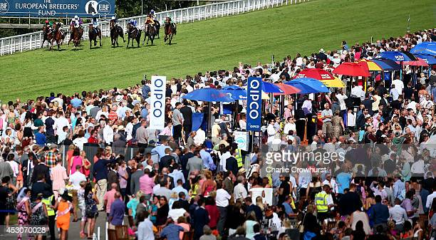 A general view of the race as horses run in The Natwest ahead for Business EBF Stallions Maiden Stakes at Goodwood racecourse on August 02 2014 in...